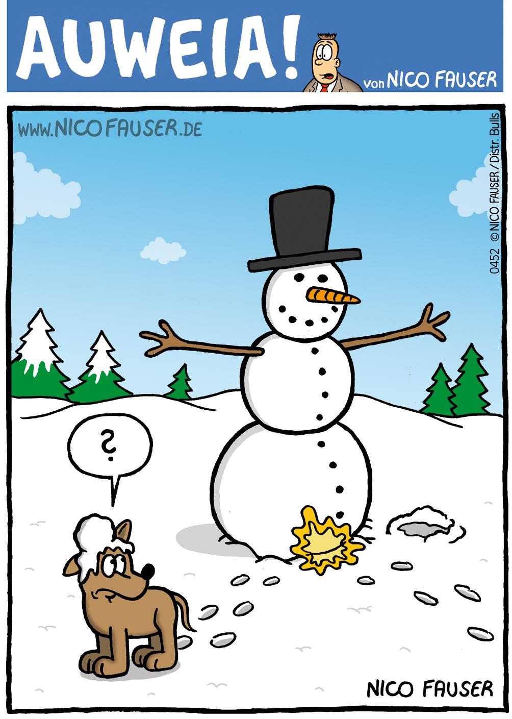 Auweia_0452 lustiger Schneemann_Winter F