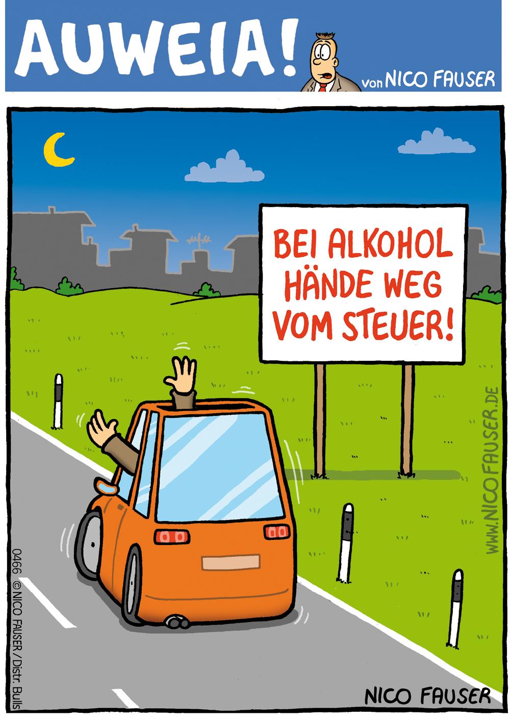 Auweia_0466 Hände weg vom Steuer F